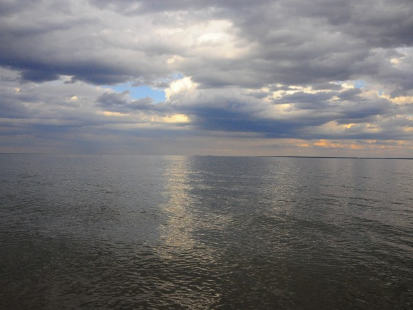 View of the Chesapeake Bay from Calvert Cliffs State Park