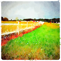 Painted with the waterlogue ipad art app